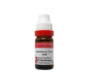 Dr. Reckeweg Sambucus Can Dilution 50M CH